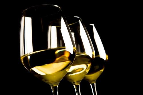 Ochutnávka kvalitního vína je výborný program na firemní oslavu