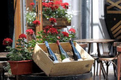 Tiché bílé a červené víno si můžou za určitých okolností odečíst podnikatelé z daní