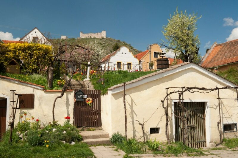 Wine cellars during spring at village of Pavlov produces Czech wine